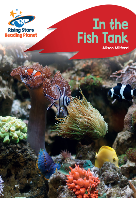 Reading Planet - In the Fish Tank - Red B: Rocket Phonics | Alison Milford | Hodder